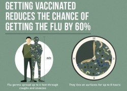 Getting Vaccinated Reduces Chance Getting Flu by 60 Percent