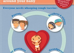 Whooping Cough Vaccine Infographic