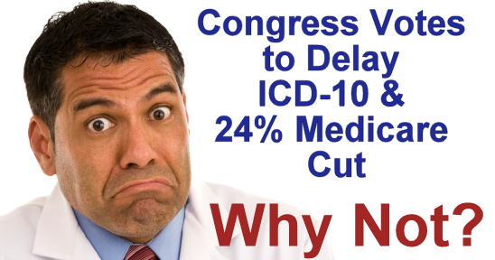Why Not Delay ICD-10?