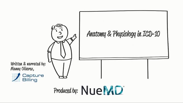 ICD-10 Basics - Anatomy and Physiology